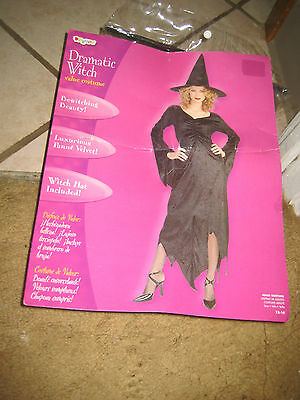 Adult Women's Halloween Witch Costume