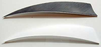 5 ½ Inch Shield Fletches Suitable For Making Longbow Arrows