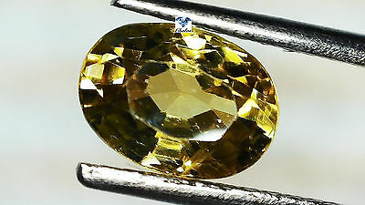 1x Spinell - Oval facettiert Honiggelb 1,55ct. 5,2x7,3x3,8mm (1540C)