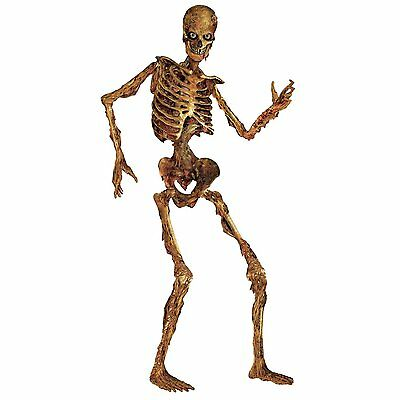 Beistle Jointed Skeleton Figurine for Party, 6-Feet, High Quality[00130] NEW HDO
