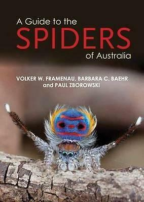 NEW A Guide to Spiders of Australia By Zborowski Paul Paperback Free Shipping