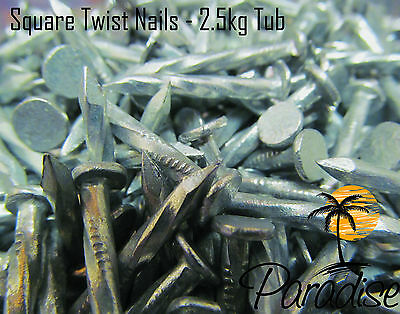 Galvanised Square Twist Twisted Joist Hanger Nails 30 x 3.75mm 1KG