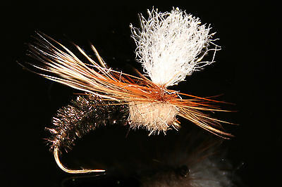 qty//taille COLEOPTERE mouche SERENITY dry fly fishing flies beetle seche