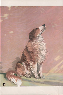 Rough Collie Lovely Old Vintage 1930's Diane Thorne Dog Bookplate Art Print