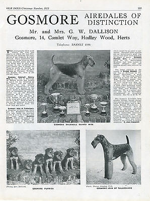 Airedale Terrier Our Dogs 1951 Dog Breed Kennel Advert Print Page Gosmore Kennel