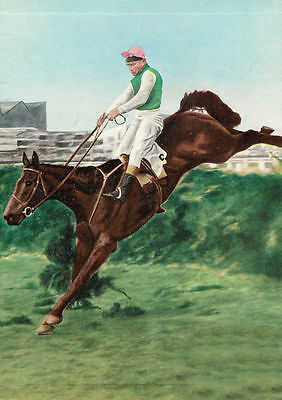 Michael Scudamore winning the 1959 Grand National on Oxo A2 Size Poster