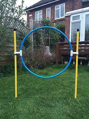 Jessejump Agility Basic Hoop & 3x Basic Sliding Jumps Set