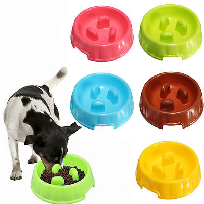 1X Pet Dog Cat Slow Feeder Water Bowl Puppy Anti Slip Choke Gulp Feed Bloat Dish