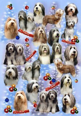 Bearded Collie Dog Christmas Wrapping Paper Design by Starprint