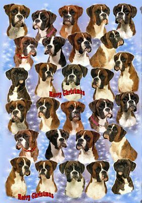 Boxer Dog Christmas Wrapping Paper Design by Starprint