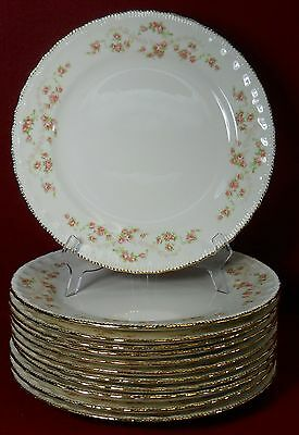 "POPE GOSSER china FLORENCE Set of Twelve (12) Dinner Plate 10-1/8"" NO Crazing"