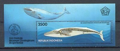 38379) INDONESIA 1994 MNH** Zoological museum s/s