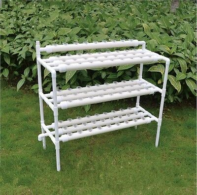 NFT Hydroponics system with 90pcs of net cup. Home hydroponics system. Nutrient