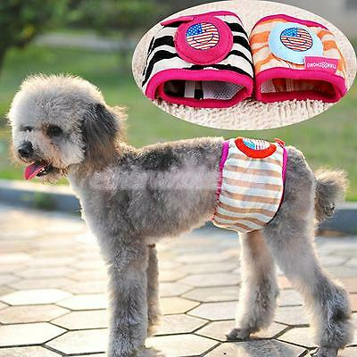Pet Male Dog Cotton Pants Belly Band Sanitary Smiley Underwear Taille # 12