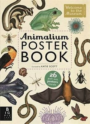 Animalium Poster Book by Katie Scott 9781783703531 (Paperback, 2015)