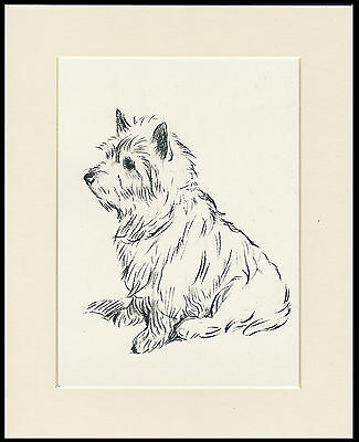 Seated Cairn Terrier Charming Old 1930's Ready Mounted Lucy Dawson Dog Art Print