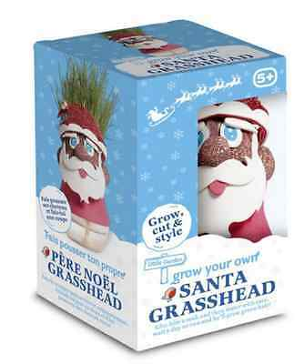 Grow Your Own Santa Grass Head Novelty Stocking Filler Christmas Gift
