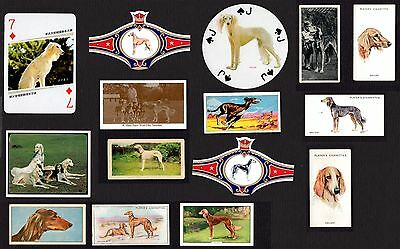 15 Saluki Collectable Vintage Dog Cigarette Trade / Breed Cards And Bands