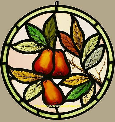 Antique Hand LEADED Painted STAINED GLASS Round - Pears - We Can Ship Worldwide