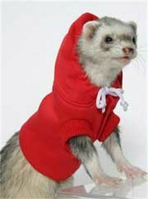 Marshall Ferret Sweatshirt, Colors Vary by Marshall Pet Products (FW-294) AOI