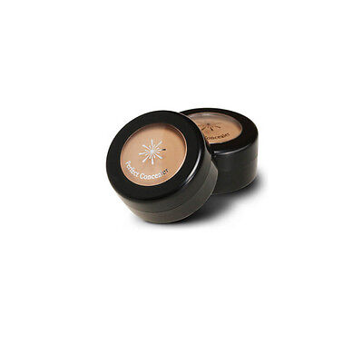 MISSHA The Style Perfect Concealer 3g Free gifts (2 Color to Choose)