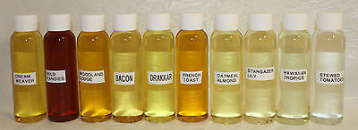Lot 10 Hi-Quality Fragrance Scented Oils Soap Candle Making 2 oz No63