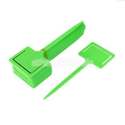 20pc PP 18x6.5cm plastique durable Wrap Around usine Hanging Tag Green