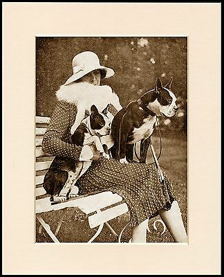 Boston Terrier Lady And Dogs Vintage Style Dog Print Mounted Ready To Frame