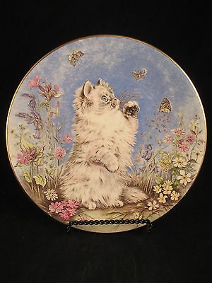 Flutter By 5th Kitten Encounters Cat Plate Collection Royal Worcester