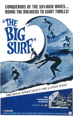 THE BIG SURF Movie POSTER 11x17
