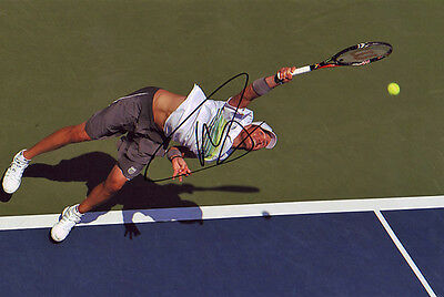 Mardy Fish Signed 8X12 Inches Tennis Photo