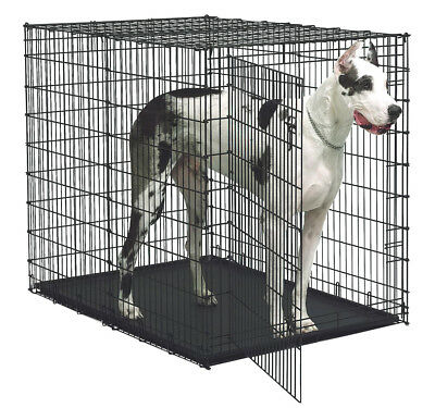 Midwest Homes For Pets Solutions Series Colossal Pet Crate