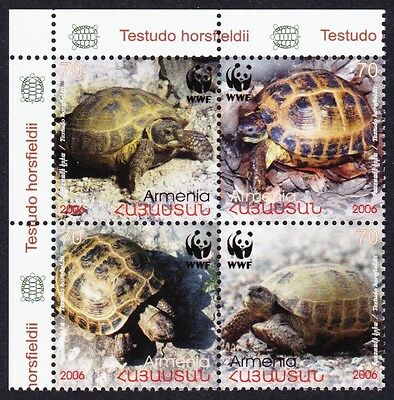 Armenia WWF Four-toed Tortoise 4 stamps in block 2*2 SG#605/08 SC#753-56