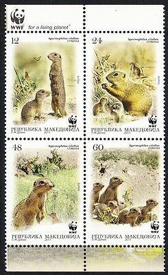 Macedonia WWF European Ground Squirrel set of 4v in block 2*2 SALE AT FACE VALUE