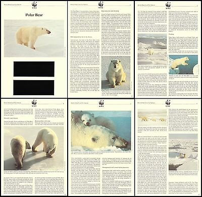 USSR WWF Polar Bear Info Pages