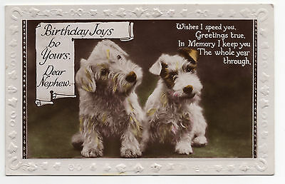Sealyham Terrier Old Colour Tinted Birthday Greetings Postcard