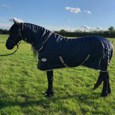 Equidor Aurora 200G Horse Stable Rug Combo Fixed Neck Medium Weight ALL SIZES