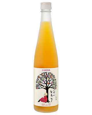 Choya Fruit Puree 500mL bottle Sake