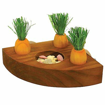 Rosewood Boredom Breaker Carrot Toy 'n' Treat Holder for Rabbit Guinea Pig etc