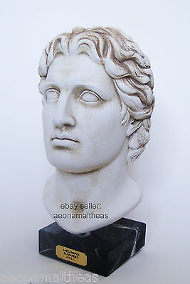 Alexander the Great - Bust of the Ancient Greek Leader - 30cm