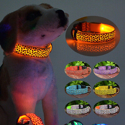 Rechargeable USB LED Collier Chien D'animal Familier Clignotant Lumineux