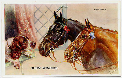 English Springer Spaniel And Polo Ponies Old Dog Art Postcard Artist Mabel Gear
