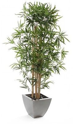 Closer To Nature Artificial 4ft Golden Bamboo Tree - Artificial Silk Plant And
