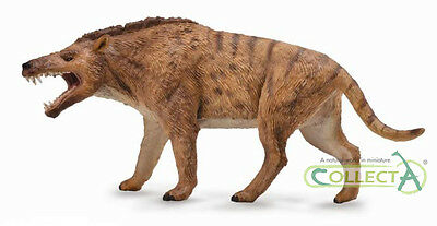 NEW* CollectA 88772 Andrewsarchus Dinosaur 1:20 Deluxe Scale Model