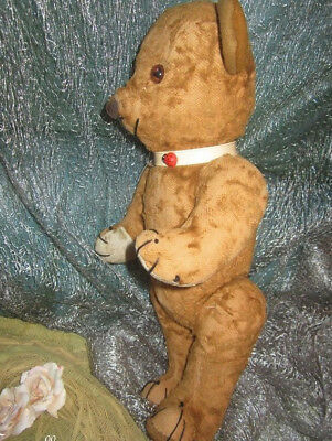 """♫ PELUCHE Vieil OURS """"Canaille"""" Teddy Bear Antique, COLLECTION d'OURS Anciens ♫"""