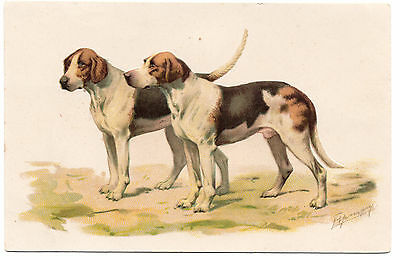 Foxhound Two Dogs On Old Embossed Dog Art Postcard