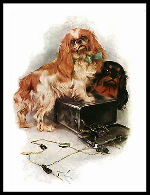 Cavalier King Charles Toy Spaniel Dogs Charming Vintage Style Dog Print Poster