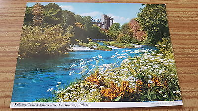 Kilkenny Castle and River Nore county Kilkenny Ireland Postcard D73