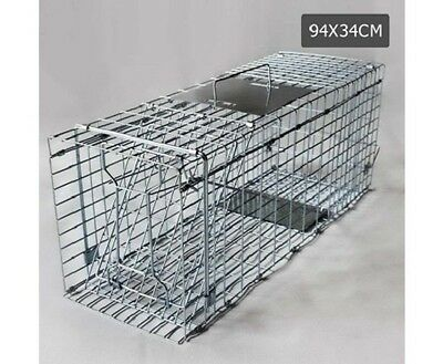 NEW Galvanised Iron Wire Collapsible Large Humane Pest Animal Trap Cage - Silver