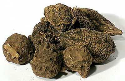 High John 1oz Dried Whole Root  Wiccan Pagan Witch Herb Magick
